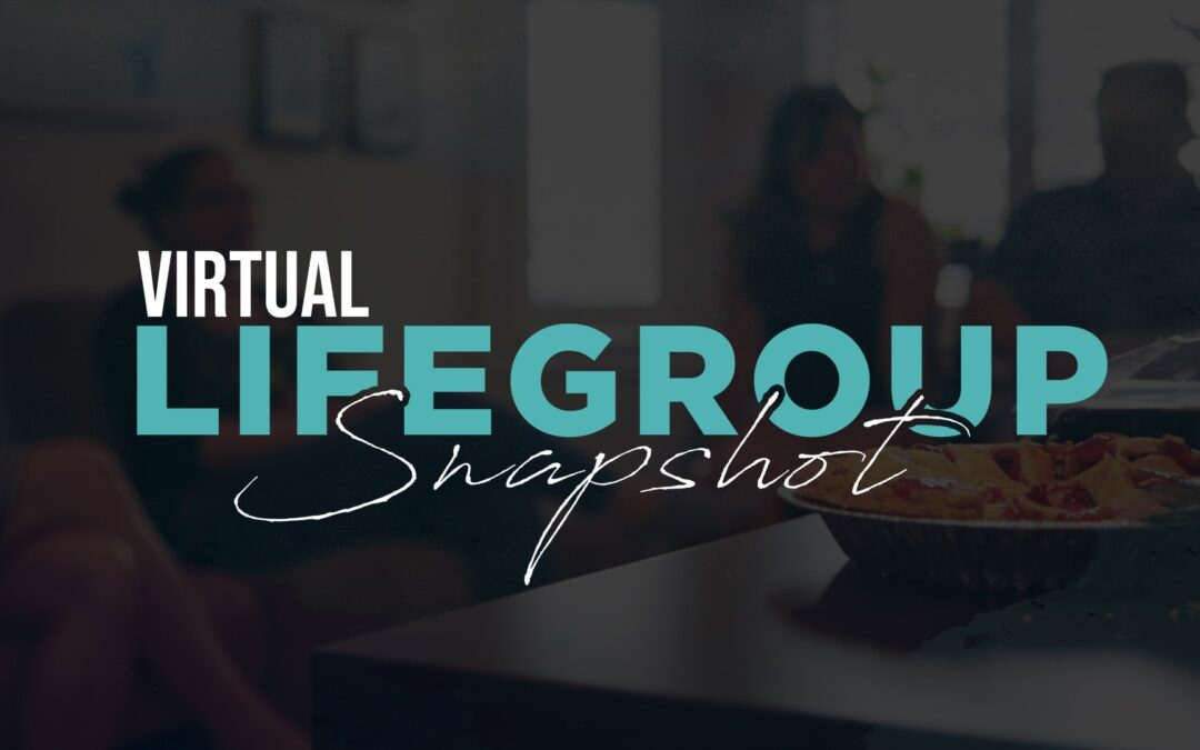 LifeGroup Snapshot